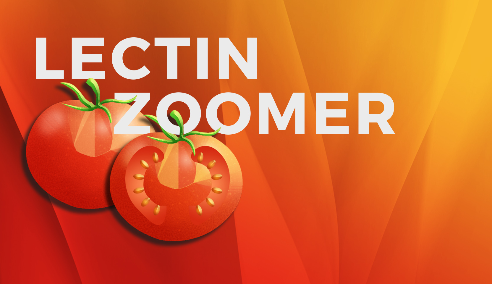 slider_lectinzoomer