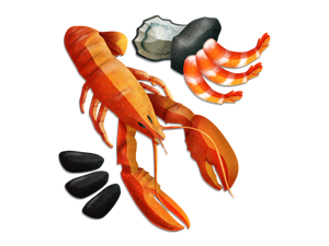 Seafood Zoomer