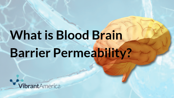 blood-brain-barrier-permeability-what-is-that