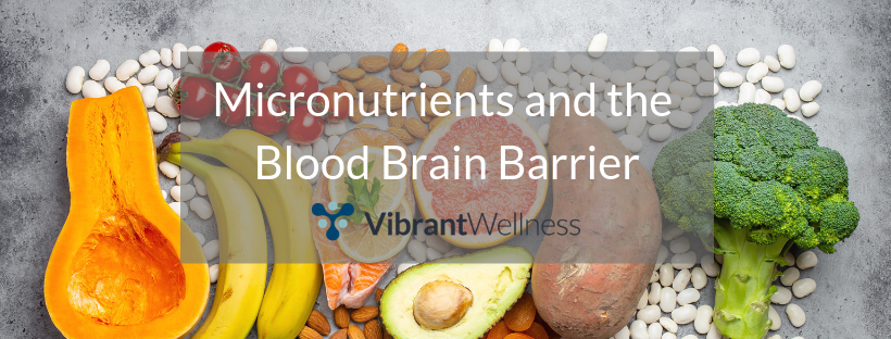 Micronutrients and the Blood Brain Barrier