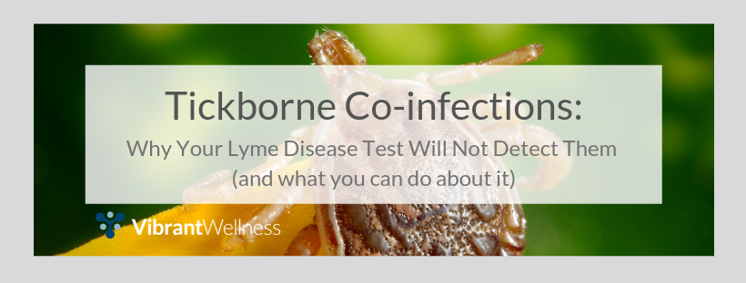 Tickborne Co-infections: Why Your Lyme Disease Test Will Not Detect Them (and what you can do about it)
